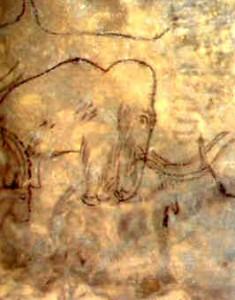 Chauvetmamut